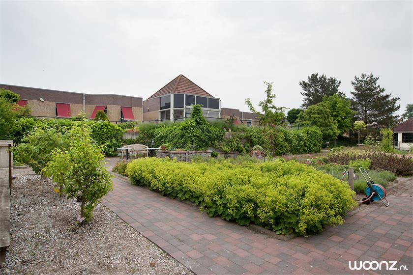 algemene tuin