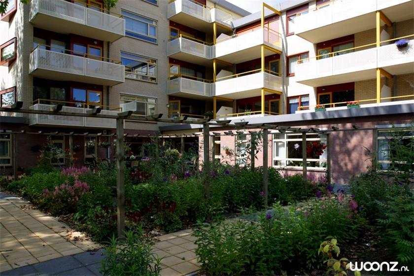 buitenzijde tuin 1