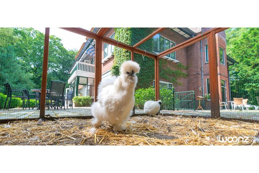 Villa-Sijthoff-Wassenaar-kippen-pand-achterkant
