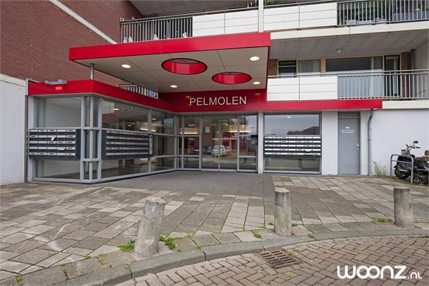 Poldermolen 73 Leiden_17