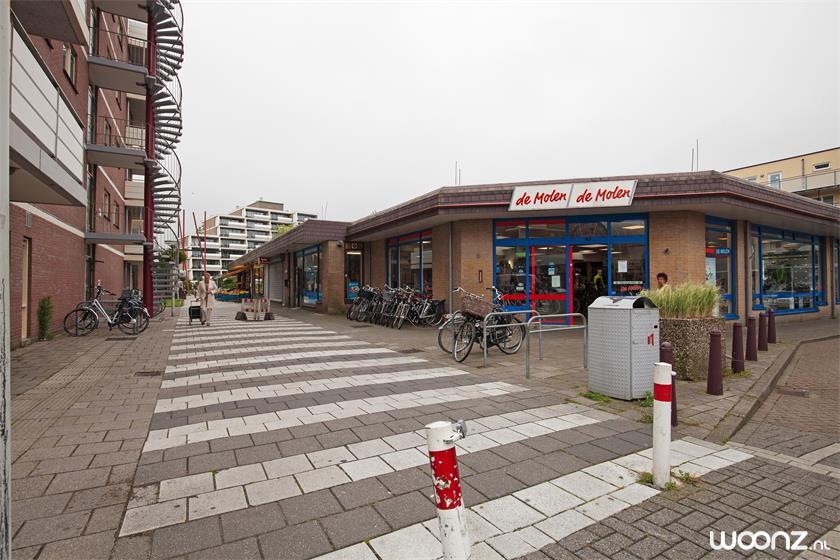 Poldermolen 73 Leiden_23