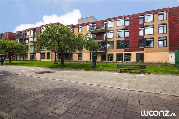 Loowaard 3 Amsterdam_04