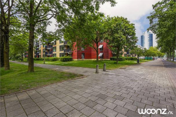 Loowaard 3 Amsterdam_12