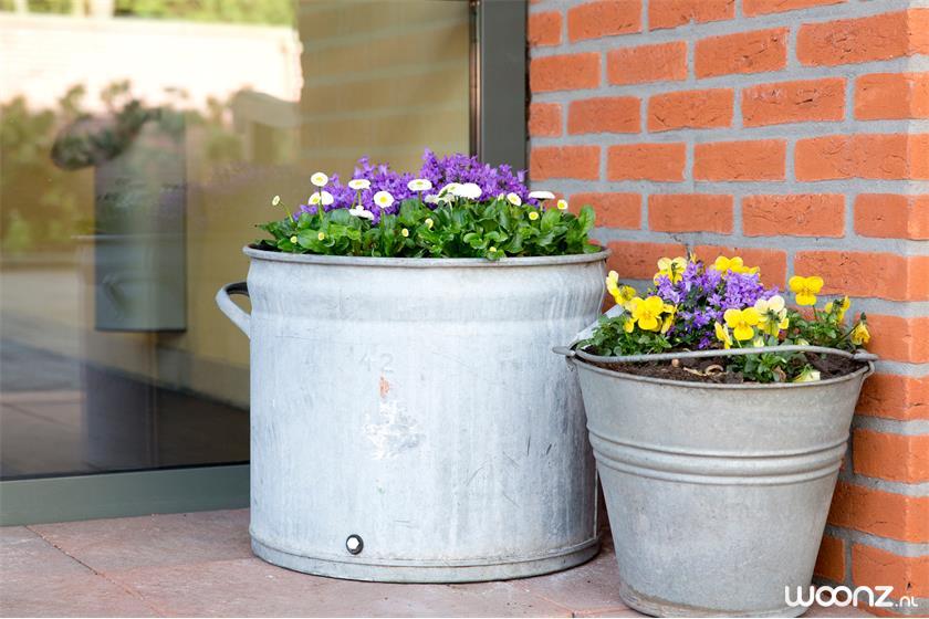 De Horst-entre-plantenbakken-buiten