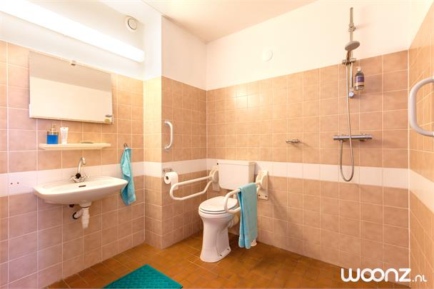 Westerwatering ruime badkamer