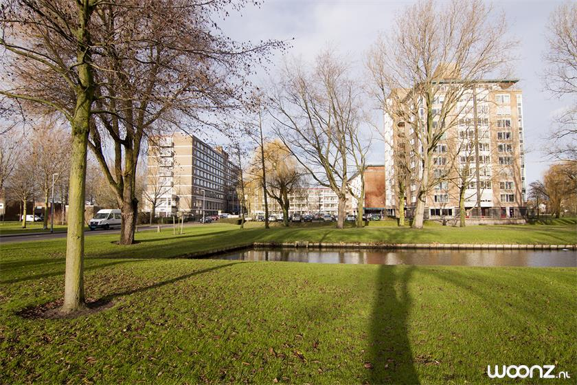 Foto Arcadia Rotterdam