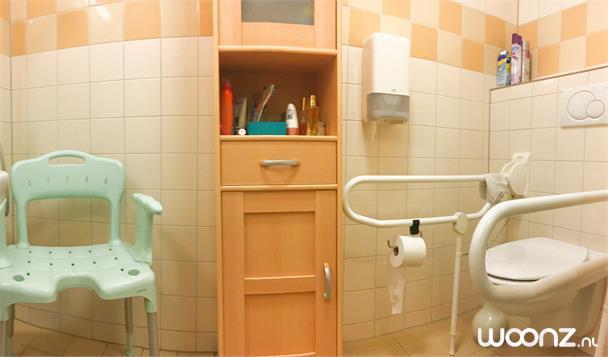 Wetering douche toilet2