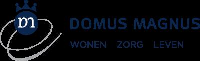 Domus Magnus, Haarlem